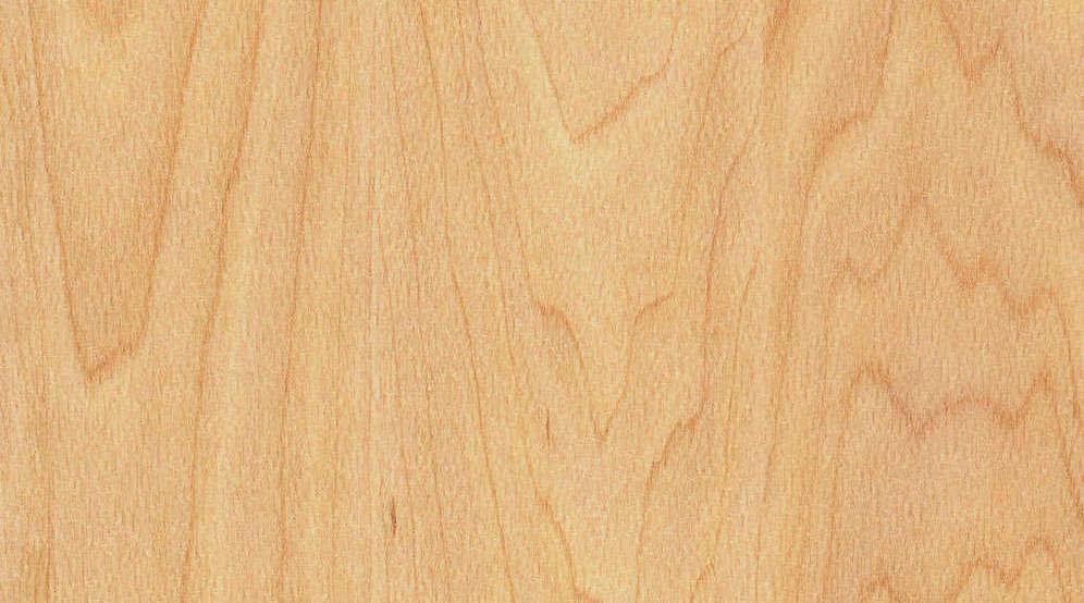 Taraflex Sport M Evolution_Wood_6381 Maple Design