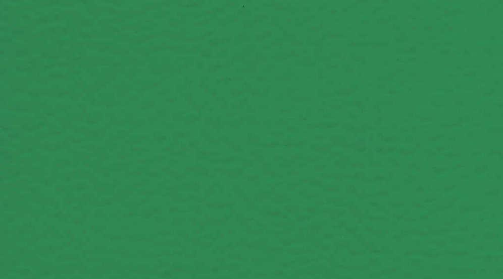 Taraflex Sport M Evolution_Uni_6570 Mint Green