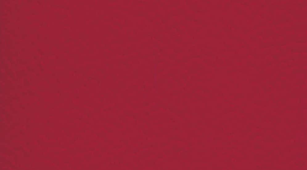 Taraflex Sport M Evolution_Uni_6180 Red