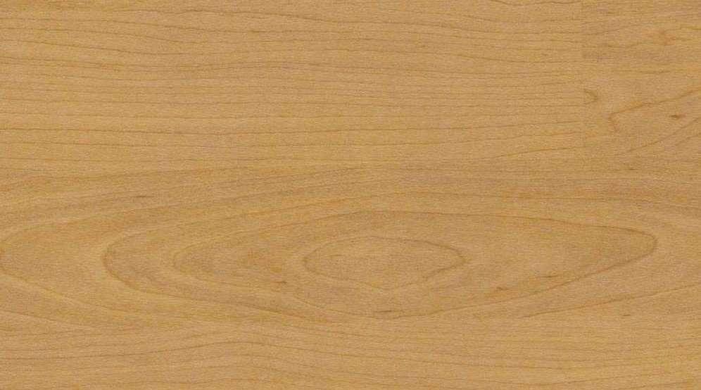 Taraflex Multi-Use 6.2_™4331 Wood Natural